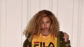 Celebrity na síti: Hubená Beyoncé, Dita P. u moře a Perkausová s levhartem!