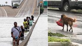 Hurikán Harvey má první oběti, na útěku je 30 tisíc lidí. Prchl i pes s granulemi