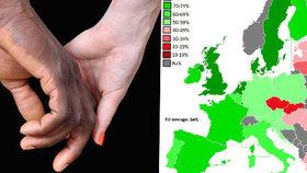 Jsou Češi nejrasističtější národ v Evropě? Vadí jim prý černoši, Židé, Asiaté i muslimové