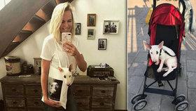 Diana Kobzanová vozí vymodlené štěně v kočárku. Tohle už trochu smrdí, přiznává