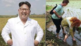 Kim Čong-un si lebedí: Západní turisty »zapřáhl« na otročinu a ještě mu za to platí!