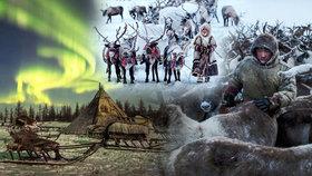 Odlehlý kmen musí přežít mrazy až padesát pod nulou: Přežívají i díky sobí krvi!