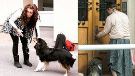 Ewa Farna, jak byste ji nepoznali: Pomačkaná, rozcuchaná a rozespalá venčila psíka