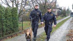 Zloděje objevili majitelé chatky, když byl ještě uvnitř: Policejní pes mu nedal šanci