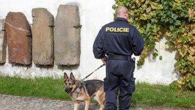 100 milionů na přepravu psů: Policie se chystá nakoupit nová auta