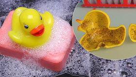 Skoncujte s kačenkou. Hračky do vody jsou prolezlé bakteriemi, tvrdí studie
