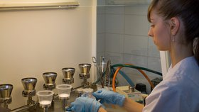 Nechte si o víkendu otestovat vodu: PVK nabízí lidem bezplatný rozbor v laboratoři