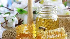 Přidaný cukr a karamel, akát bez akátu: Za šizený med hrozí výrobci pokuta až 50 milionů
