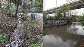 »Smrad, že by jeden pad«: V Libni teče žumpa přímo na ulici, u Rokytky vytvořila páchnoucí jezírko