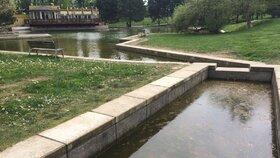 Park Přátelství v Praze 9 se konečně rozšiřuje: Už se začalo výsadbou stromů