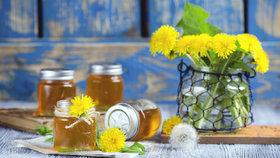 Uvařte si pampeliškový med se zázvorem, chutná skvěle a má léčivé účinky