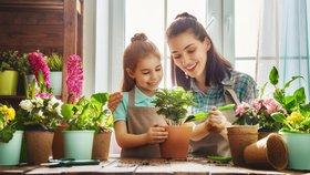 Jaké pokojovky pořídit dětem, když je zahradničení baví?