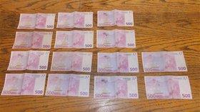 Zablácená kabelka skrývala poklad: U rybníka leželo na zemi skoro 200 tisíc korun!