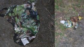 Otřesný nález na Tachovsku: Pejskovi tyran ovázal tlamu lepicí páskou a nechal ho umírat v igelitové tašce!