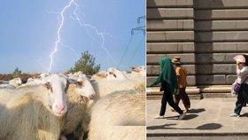 Extrémní počasí zabíjí: ve Španělsku umírali lidé, v Srbsku blesk zmasakroval stádo ovcí
