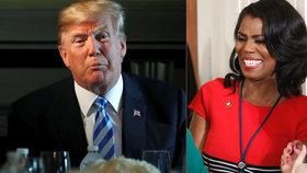 """""""Negři"""", říkal prý Trump o Afroameričanech. Exporadkyně ho ve své knize viní z rasismu"""