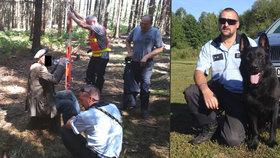 Stařeček (84) zkolaboval v lese na Třebíčsku: Zachránil ho policejní pes Gauner