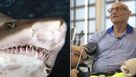 Muž unikl žralokovi díky úderu do žaber. Chvat znal z přírodovědného dokumentu