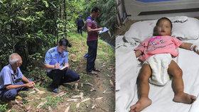 Vydržela 5 dní bez jídla a vody. Batole našli v lese na pokraji života!