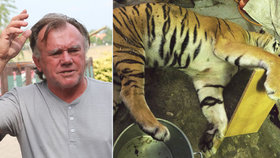 Berousek poprvé promluvil o nechutném byznysu s tygřím masem: Kdo zabil šelmu? Neřeknu!