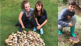 200 hřibů za 2 hodiny: Po absolutním půstu začínají houbí hody