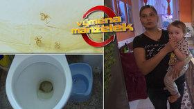 Nechutná Výměna manželek: Zaneřáděný záchod, pavučiny a zažraná špína!