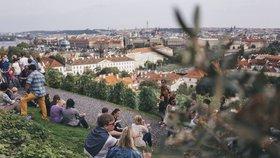 V Praze 1 poteče burčák proudem: Svatováclavskou vinici čeká vinobraní