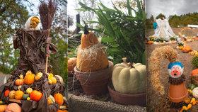 Výstava jak z pohádky: Botanickou zahradu zdobí nadpřirozené bytosti z dýní