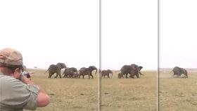 """Hrůzné video: """"Miř mezi oči,"""" radili si lovci slonů. Pak se role obrátily!"""