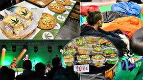 Konopné masti, pivo nebo muffiny: V Letňanech odstartoval Cannafest