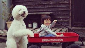 Hvězdami díky babičce: Dvouletá holčička a pudlík válcují sociální sítě