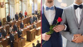 """""""Uzákoníme sňatky s dětmi?"""" Poslanci se hádali o svatby homosexuálů a o změnu Ústavy"""