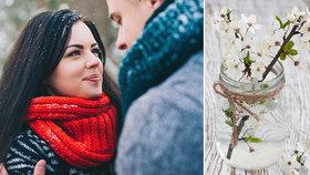 Barborka přikouzlí lásku: Co dělat, aby do Vánoc vykvetla?