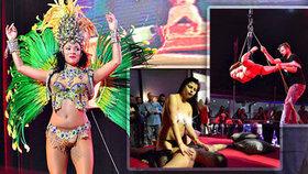 VIDEO: Nahotinky ve vířivce, na pódiu i u tyče, sex na živo:  Erotický veletrh v Letňanech odstartoval!