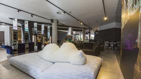 Lední medvěd spí v pražském showroomu Decoland