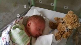 Prvním miminkem roku 2019 je Tomáš z Písku. Porazil Míšu z Prahy