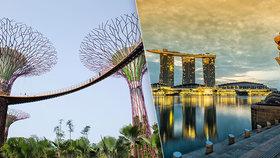 Exotický Singapur: Pět milionů lidí na území o polovinu větším než Praha!