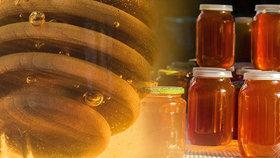 Poznáte kvalitní med? Udělejte si doma bublinový test! Plus 8 faktů, které se vyplatí znát