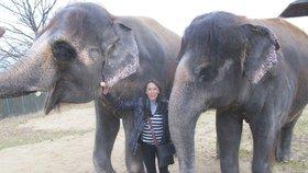 Heidi Janků oplakává mrtvou slonici Kalu: Znala jsem ji osobně!