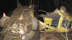 Vážná dopravní nehoda u Mariánských Lázní: Cizinci, který řídil opilý, hrozí až osm let vězení