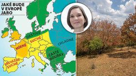 Neblahá předpověď meteorologů pro Česko: Suchý máj vystřídá pekelné léto