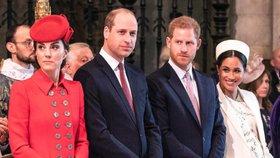 Vévodkyně Kate se rozhodla usmířit Williama s Harrym! Šla na to mazaně