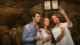 """""""Jen dvě sklenky vína?"""" Vládní plán na omezení pití alkoholu pobouřil Francouze"""