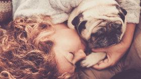 Jakého psa vídáte ve snech? Odhalte, co se vám vaše podvědomí snaží sdělit!