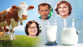 """Hleny z mléka? Odborník promluvil o """"zácpě v hlavě"""" i alergii a antikampani"""