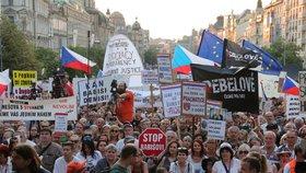Demonstrace proti Babišovi podporuje jen třetina lidí, tvrdí průzkum. Komu vadí?