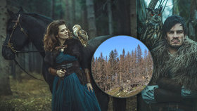 Jandová s koněm a Kraus s výrem zrazují Čechy od nábytku z exotického dřeva