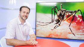 Exotické nemoci útočí. Odborník: Nakazí vás spíš turista než migrant