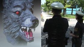 Horor v Mnichově: Holčičku (11) znásilnil muž ve vlčí masce