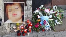 Bude mít utýraný Mareček (†2) z Loun pomník až v Praze?